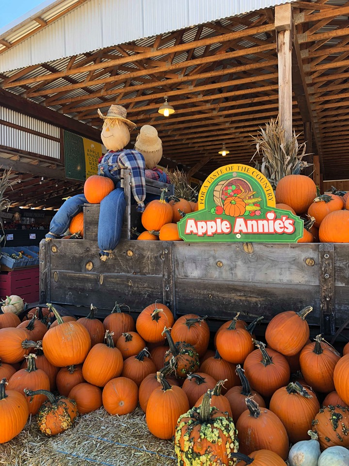 Two scarecrows dressed in overalls sit atop an Apple Annies wagon, surrounded by hay bales and pumpkins.