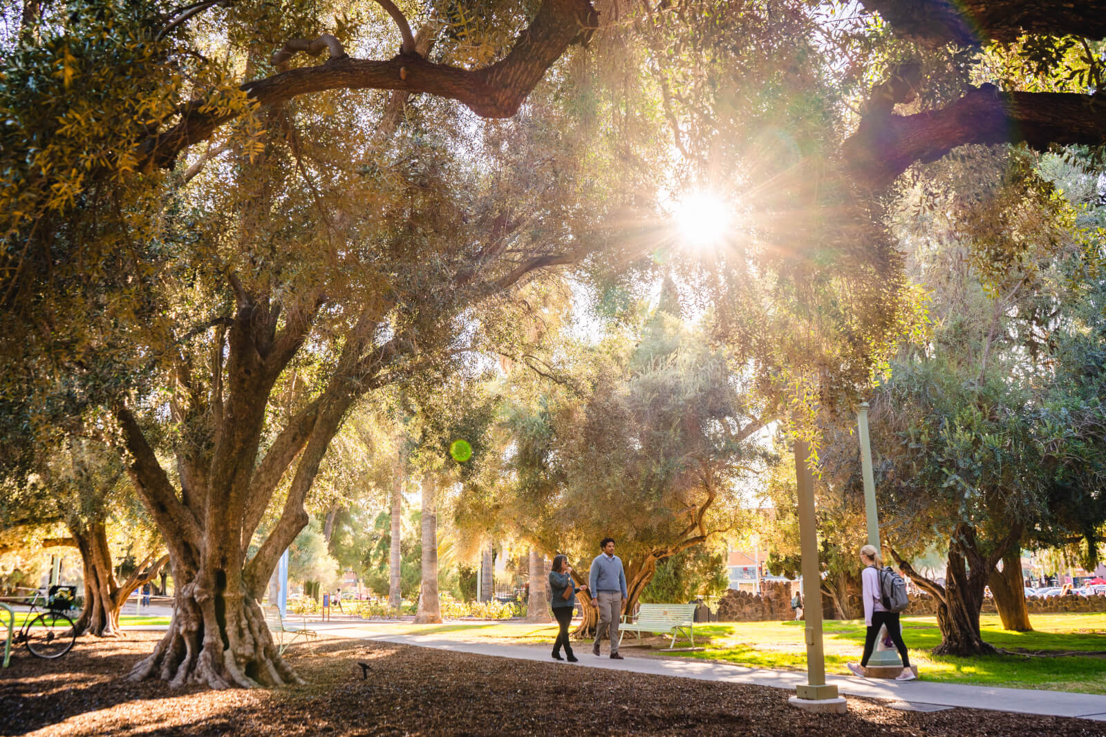 Three people walking on a sidewalk on the University of Arizona campus in Tucson, Arizona